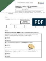 Evaluación pueblos originarios 2019 (Autoguardado)