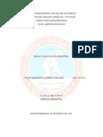 ENSAYO CALIFICACION REGISTRAL.docx