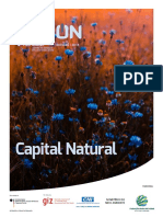 CAPITAL_NATURAL-FINAL5