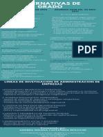 ALTERNATIVAS DE GRADO.pdf
