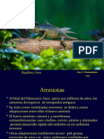 21Reptiles y Aves.ppt