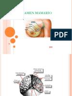 Examen-mamario--HC-Estacion1-.pdf