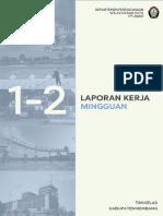 LAPORAN MINGGU 2 TIM KABUPATEN_review PN.pdf