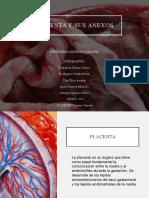 PLACENTA-Y-ANEXOS.pptx