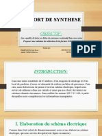 RAPPORT DE SYNTHESE