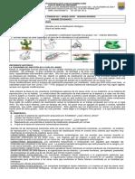 PDF, Ciencias Naturales grado sexto