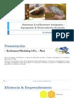 Sistemas EcoEficientes Integrales – Aquaponía