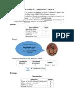 INDICACIONES PARA LA DIVISIÓN EN GRUPOS - seminarios y especialidades.pdf