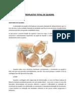 artroplastia-total-quadril-orientacoes