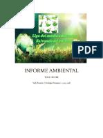 Informe_Ambiental_Yady