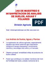 MUESTREO E INTERPRETACION DE ANALISIS.pdf