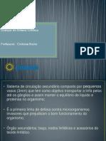 Doenças linfáticas.pdf
