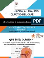 Introduccion al analisis Olfativo del cafe.pdf