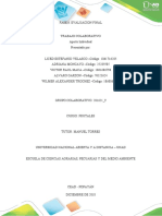 Fase 6 Evaluacion Final POA 201621_9