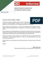 Nº 31 Comunicado Subcomisiones 24-01-2011