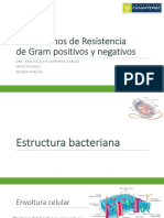 Morfología bacteriana y Mecanismos de Resistencia.pdf