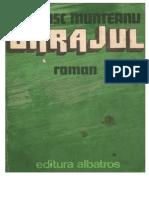 Francisc Munteanu - Barajul #1.0~5