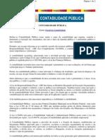 Contabilidade Pública_breve resumo