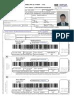 Documento del Registro Telemático.pdf