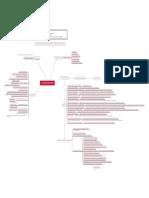 Producto Académico 01 Mapa Mental.pdf