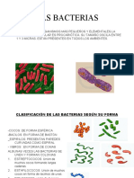 Taxonomia Sexto Bacterias 2020