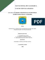 Monografia Potencial Agroexportador en el Perú.docx