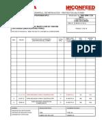 3006-5000-CGB-30012 Procedimiento de tuberia Enterrada