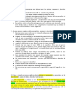 características de los pilotes.docx