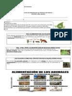 Guía de Ciencias Rol Aliment de Las Plantas