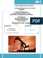rapport de stage.tizi&benaziz