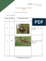 Anexo 2 consonante(1).pdf