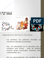 AMINOACIDOS (7)