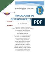 INDICADORES DE SALUD-HOSPITAL GUILLERMO ALMENARA 2019