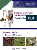 EvolutionTests(KFogler)