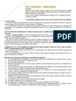 Preguntas y Respuestas - 1º Parcial.docx
