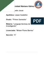 Origen Del Lenguaje Etc
