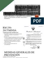PPT RM 250-2017 MINSA