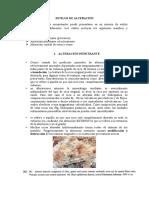 ESTILOS DE ALTERACIÓN HIDROTERMAL