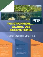 Fonctionnement global des écosystèmes