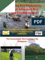 rice duck integration - Copy
