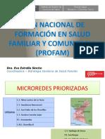 plan PROFAM.pptx