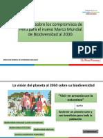 Ppt marco mundial DB 2030