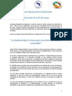 Desarrollo-Lema-SNN-08.MAYO.-2019-.pdf