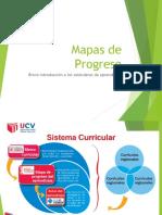 MAPAS DE PROGRESO - VIII ciclo