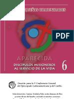 CCB y pequemas comunidades en Aparecida.pdf