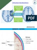 Fisiopatologia neurologica