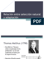 Relación entre selección natural y adaptación