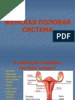 Презантация с сайта www.skachat-prezentaciju-besplatno.ru - 01300202