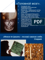 Презантация с сайта www.skachat-prezentaciju-besplatno.ru - 01300201.pptx
