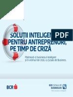 solutii inteligente pentru antreprenori pe timp de criza booklet v3 13apr